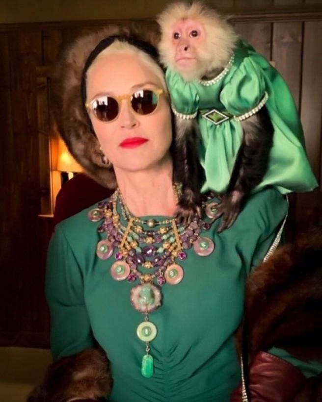 «Вы обе очень стильные»: 62-летня Шэрон Стоун позировала с обезьянкой, одетой в платье (ФОТО)