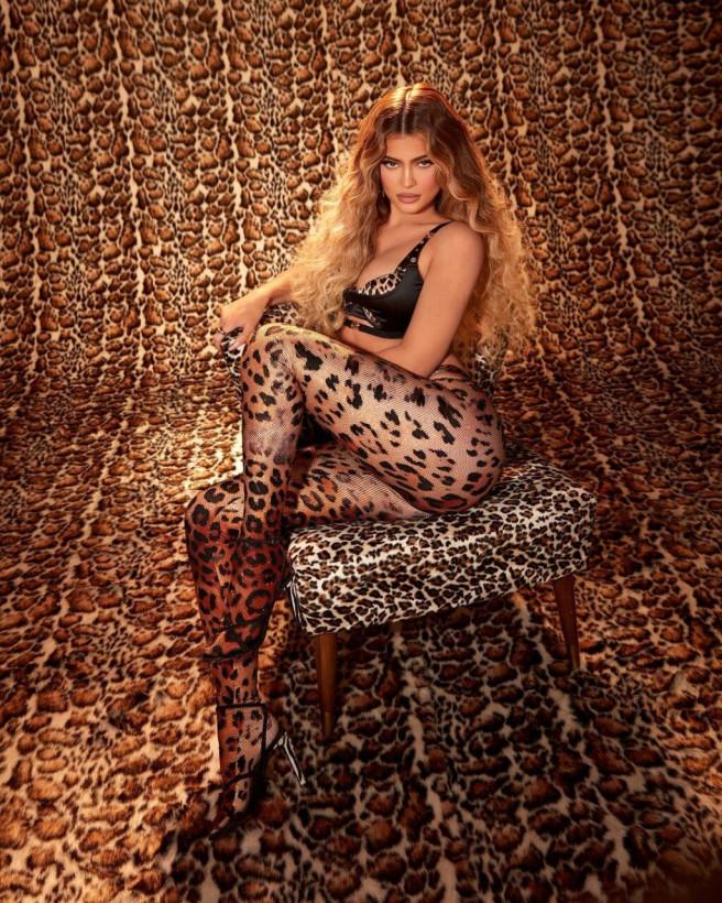 Кайли Дженнер в леопардовых колготках показала пышные формы (ФОТО)