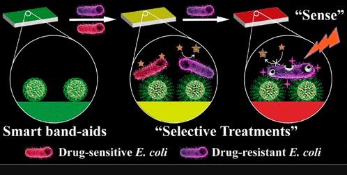 Китайские медики создали пластырь, меняющий цвет в зависимости от уровня инфекции (ФОТО)