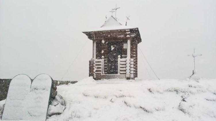 «Метель»: В Карпатах выпал майский снег (ФОТО)