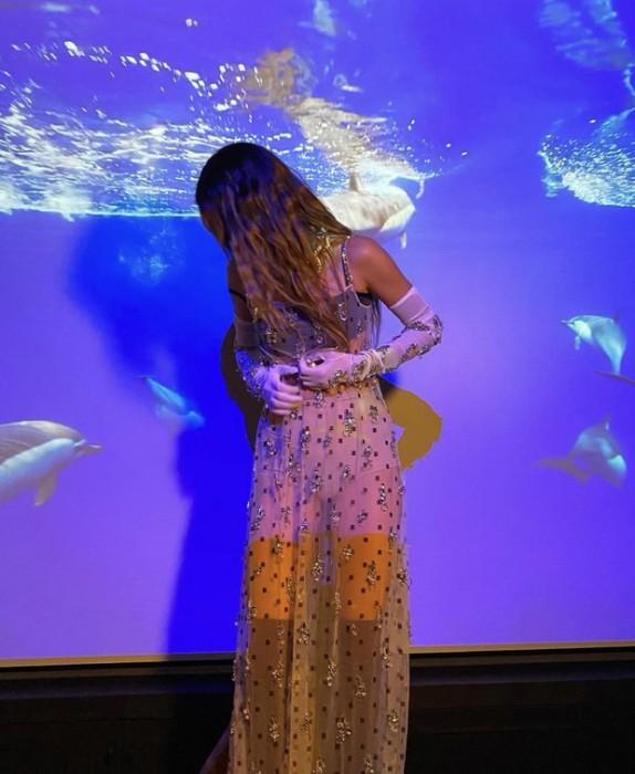 Кендалл Дженнер позировала в прозрачном платье