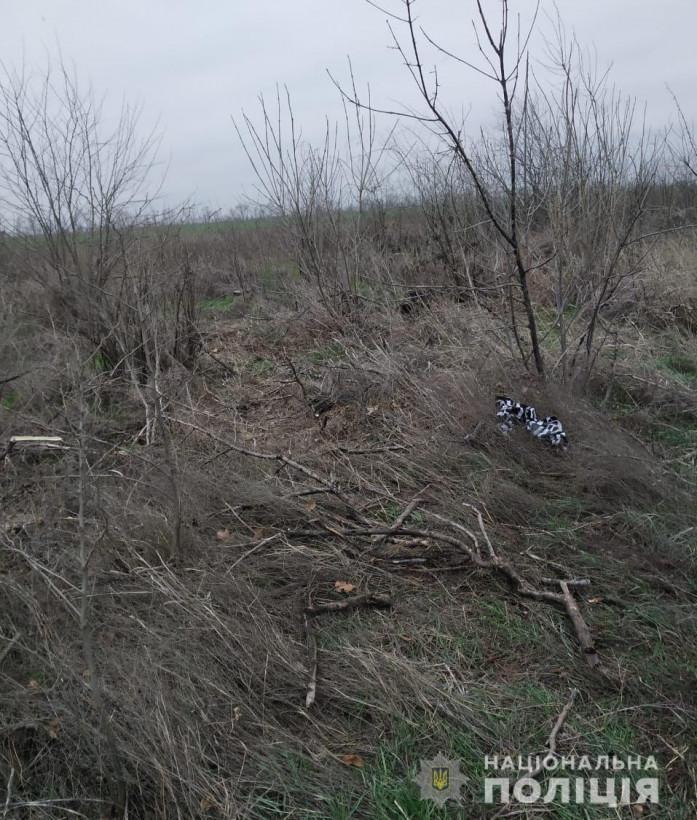 На Херсонщине мужчина забил до смерти собственного отца (ФОТО)